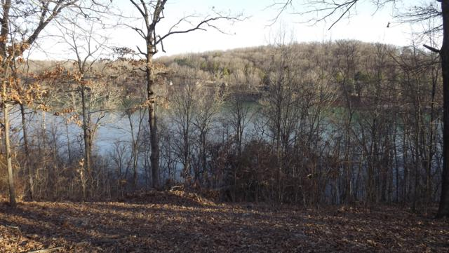 88 Lot Fox Hollow Drive, Shell Knob, MO 65747 (MLS #60131263) :: Team Real Estate - Springfield