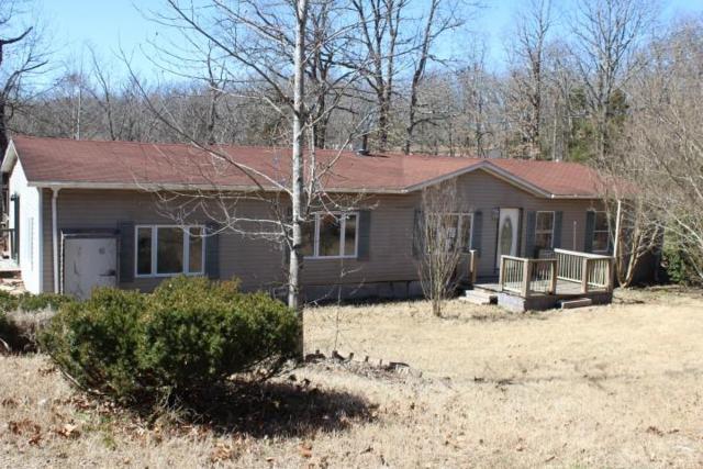 114 Brittain, Kirbyville, MO 65679 (MLS #60131912) :: Team Real Estate - Springfield
