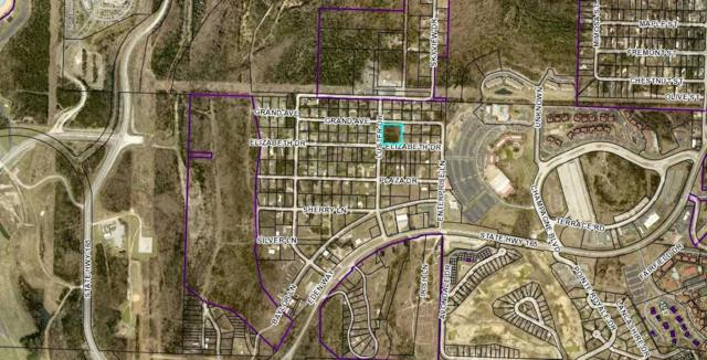 220 Elizabeth Drive, Branson, MO 65616 (MLS #60132126) :: Team Real Estate - Springfield