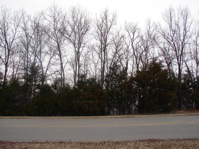 Ph9-Lt277 Skylee Drive, Hollister, MO 65672 (MLS #60132144) :: Team Real Estate - Springfield