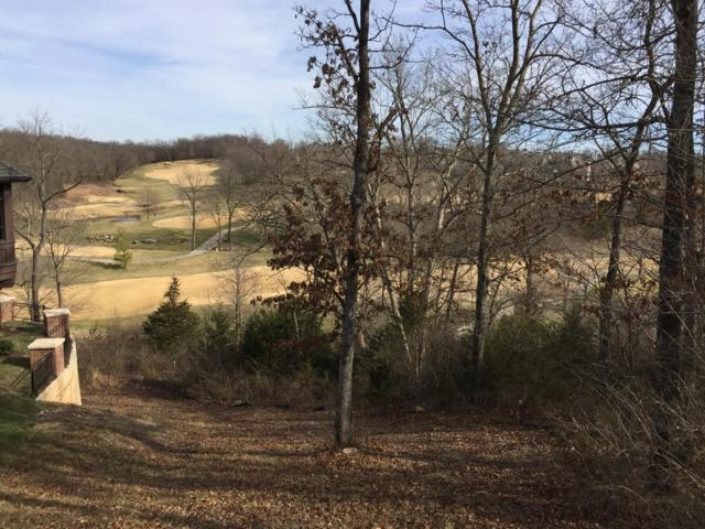 3528 E Bluff Point Drive, Ozark, MO 65721 (MLS #60132296) :: Sue Carter Real Estate Group