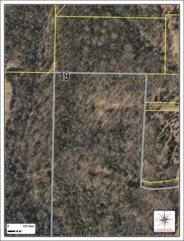 Tbd#1 Private Road 2284, Eagle Rock, MO 65641 (MLS #60132940) :: Team Real Estate - Springfield