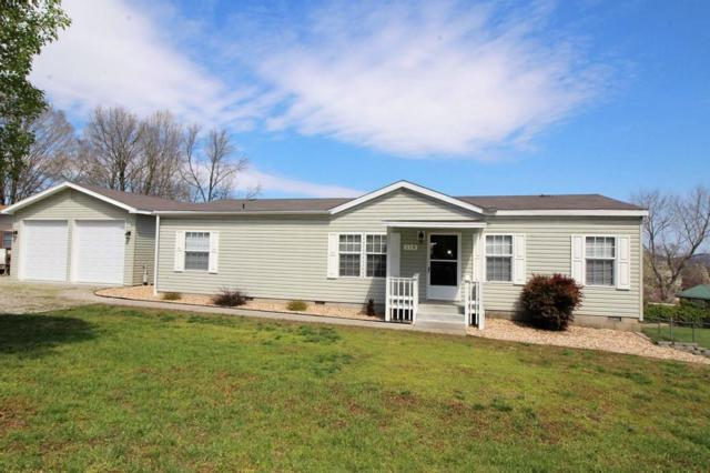 119 Brandonville Drive, Blue Eye, MO 65611 (MLS #60133127) :: Team Real Estate - Springfield