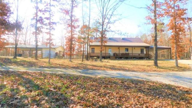 9767 County Road 459, Birch Tree, MO 65438 (MLS #60133155) :: Team Real Estate - Springfield
