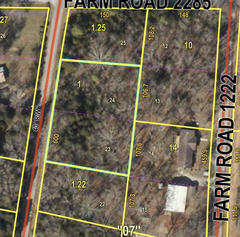 Elmo'S#3 Lots 23&24 Farm Road 1220, Eagle Rock, MO 65641 (MLS #60133216) :: Sue Carter Real Estate Group