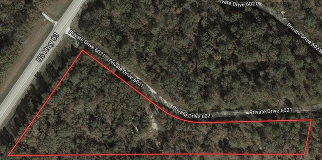 15100 Private Drive 6021, Edgar Springs, MO 65462 (MLS #60133237) :: Sue Carter Real Estate Group
