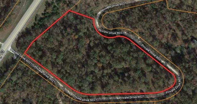 15100 Private Drive 6021, Edgar Springs, MO 65462 (MLS #60133245) :: Sue Carter Real Estate Group