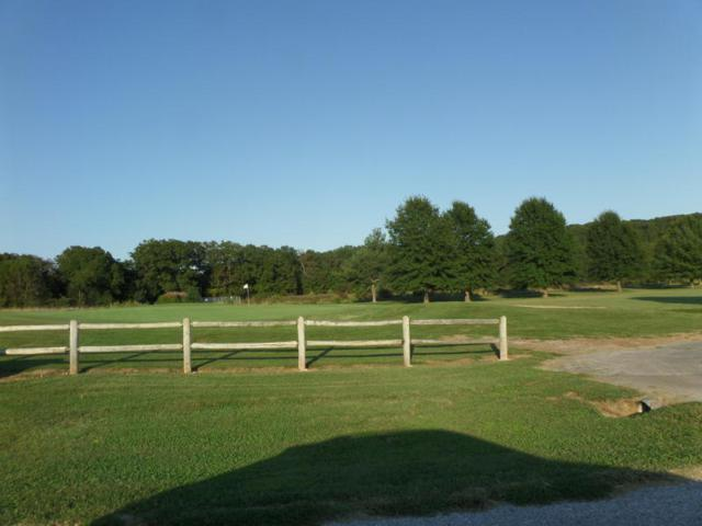Tr 4d1 Hidden Valley, Clever, MO 65631 (MLS #60133279) :: Massengale Group