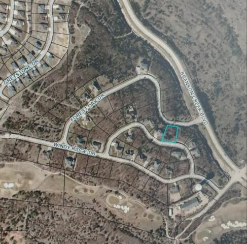 Lot 43 Woodhaven Circle, Hollister, MO 65672 (MLS #60133361) :: Weichert, REALTORS - Good Life