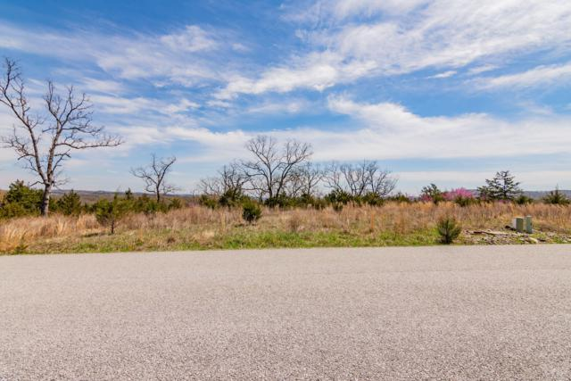Lot 148 Black Forest Lane, Branson West, MO 65737 (MLS #60133626) :: Sue Carter Real Estate Group
