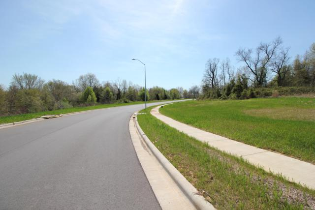 Tbd Walnut Creek Manor, S Harrison Street, Nixa, MO 65714 (MLS #60133719) :: Sue Carter Real Estate Group
