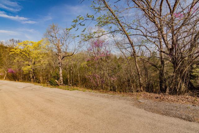 Tbd Lot Kings Ridge Road, Cape Fair, MO 65624 (MLS #60134373) :: Weichert, REALTORS - Good Life