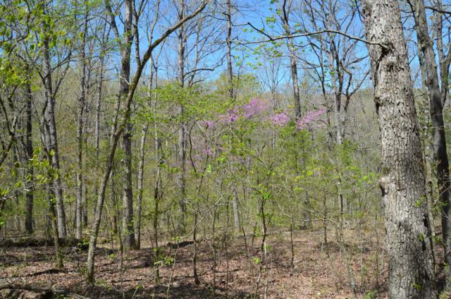 Tbd Wandering Trail, Galena, MO 65656 (MLS #60134394) :: Weichert, REALTORS - Good Life