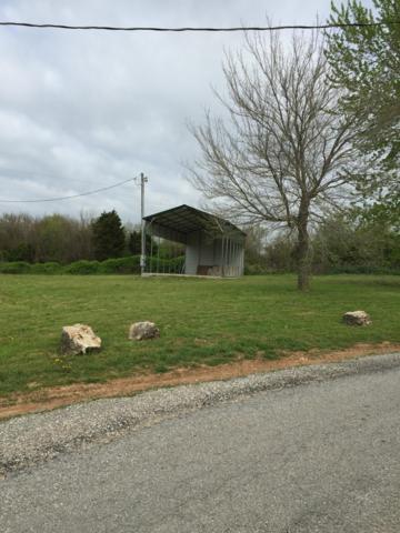 113 Dogwood Circle, Bois D Arc, MO 65612 (MLS #60134514) :: Team Real Estate - Springfield