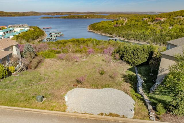 141 Split Rock Drive, Hollister, MO 65672 (MLS #60134549) :: Team Real Estate - Springfield