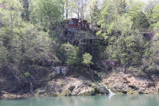 1070 Dawt Mill Road, Tecumseh, MO 65760 (MLS #60134579) :: Sue Carter Real Estate Group