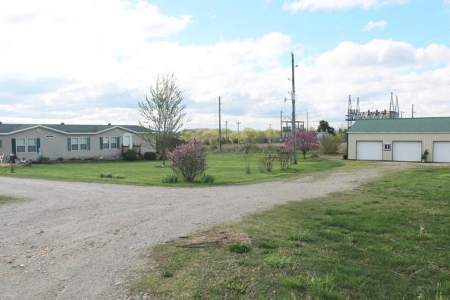 177 Brockman Road, Taneyville, MO 65759 (MLS #60134686) :: Team Real Estate - Springfield