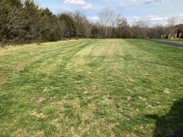 0 Rivers Edge Rd. Road, Ozark, MO 65721 (MLS #60134723) :: Team Real Estate - Springfield