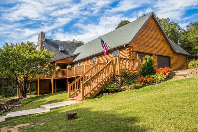 319 Serenity Lane, Galena, MO 65656 (MLS #60134780) :: Team Real Estate - Springfield