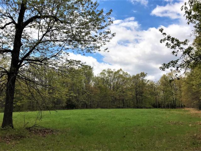 Tbd County Road 8990, West Plains, MO 65775 (MLS #60134825) :: Weichert, REALTORS - Good Life
