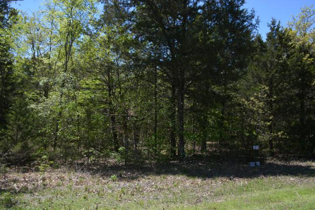 21 Eagles Bluff Road, Shell Knob, MO 65747 (MLS #60135019) :: Sue Carter Real Estate Group
