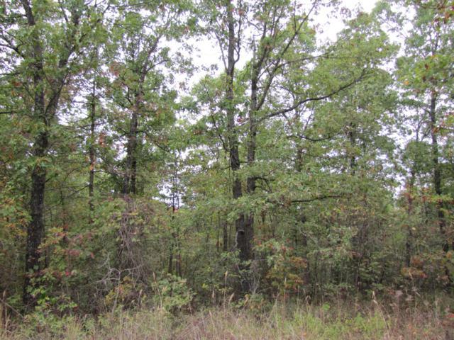 Lt 109/110 Summit Trail, Raymondville, MO 65555 (MLS #60135195) :: Sue Carter Real Estate Group