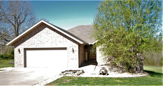 413 Kadee Drive, Crane, MO 65633 (MLS #60135327) :: Team Real Estate - Springfield