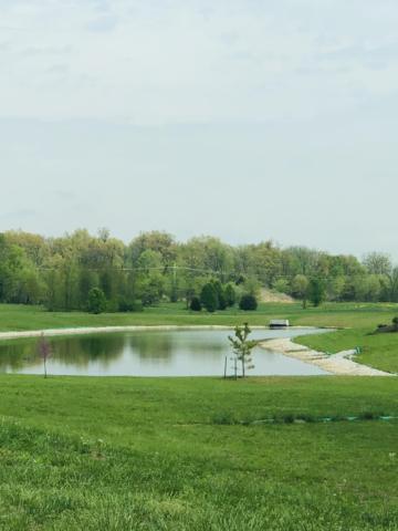 Lot 121 Village Of Ashford, Nixa, MO 65714 (MLS #60135565) :: Weichert, REALTORS - Good Life