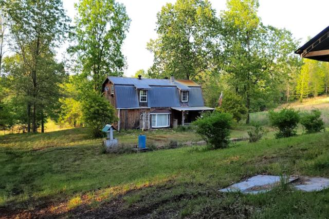 153 Private Road 204-184, Alton, MO 65606 (MLS #60135833) :: Sue Carter Real Estate Group