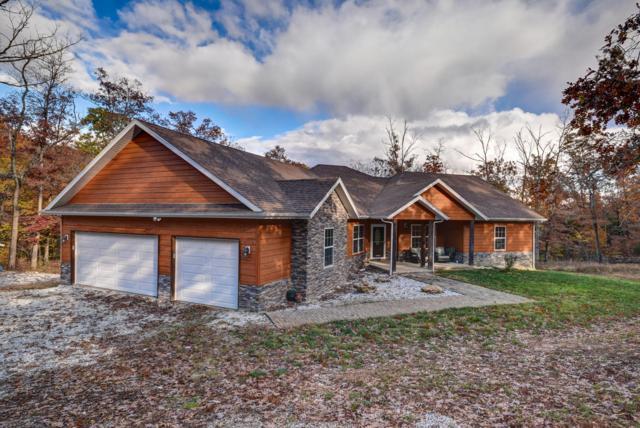 633 E Mountain Drive, Bruner, MO 65620 (MLS #60135975) :: Team Real Estate - Springfield