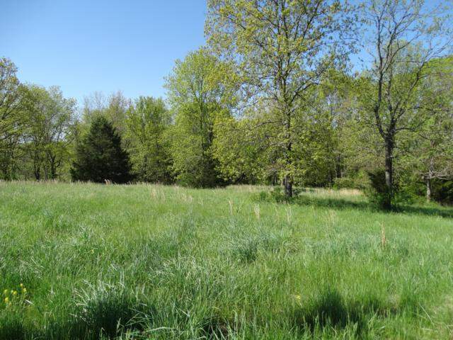 Lot 5 Gordon Lane, Galena, MO 65656 (MLS #60135978) :: Clay & Clay Real Estate Team