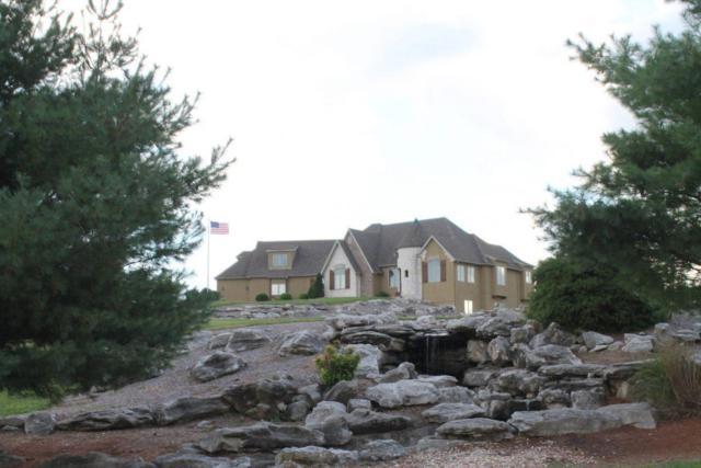 1668 Hart Lane, Nixa, MO 65714 (MLS #60136001) :: Sue Carter Real Estate Group