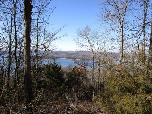 Lot 8 Kings Bishop Road, Kimberling City, MO 65686 (MLS #60136399) :: Tucker Real Estate Group | EXP Realty