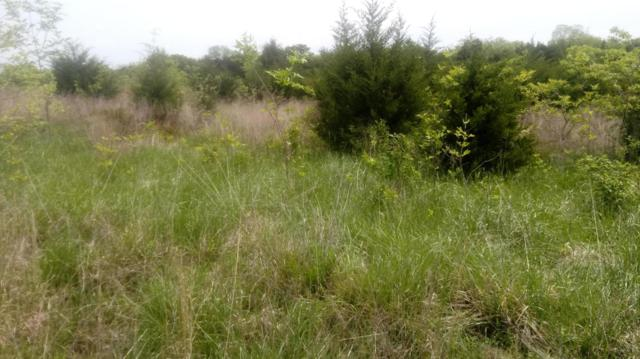 Lot 3 Whispers Edge, Flemington, MO 65650 (MLS #60136428) :: Sue Carter Real Estate Group