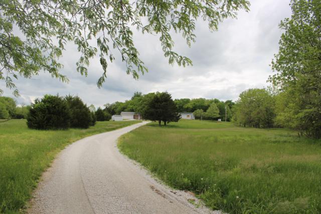 96 Alamo Drive, Buffalo, MO 65622 (MLS #60136857) :: Team Real Estate - Springfield