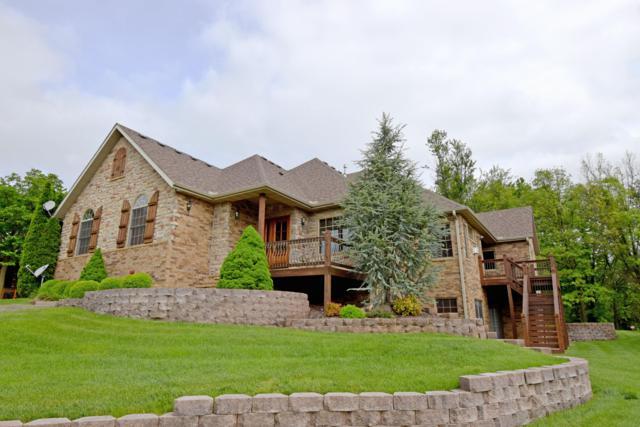 1225 W Wildcherry Street, Ozark, MO 65721 (MLS #60136981) :: Sue Carter Real Estate Group