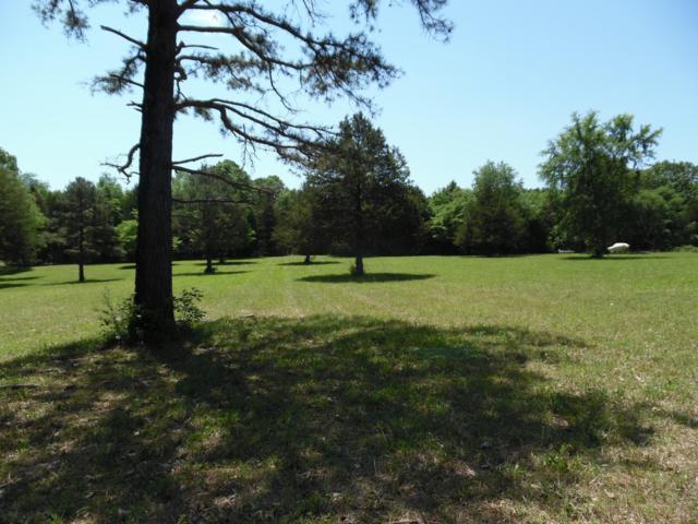 1197 Farm Road, Eagle Rock, MO 65641 (MLS #60137076) :: Massengale Group