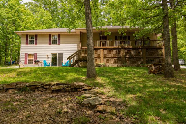 667 Rainbow Valley Drive, Highlandville, MO 65669 (MLS #60137155) :: Sue Carter Real Estate Group