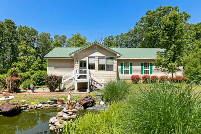 2236 Johnson Rowe Drive, Galena, MO 65656 (MLS #60137230) :: Team Real Estate - Springfield