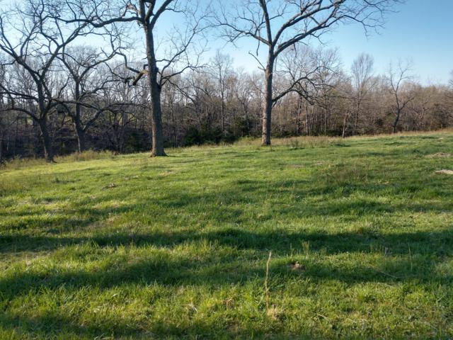 0 E State Hwy U Highway E, Rogersville, MO 65742 (MLS #60137239) :: Sue Carter Real Estate Group