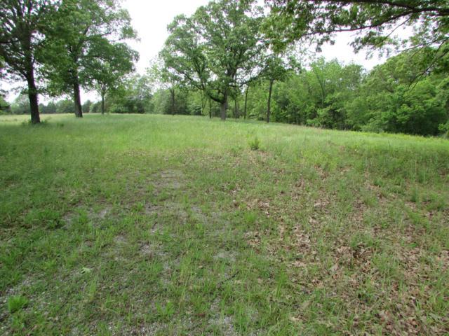 515 Oak Hill Drive Road, Houston, MO 65483 (MLS #60137411) :: Team Real Estate - Springfield