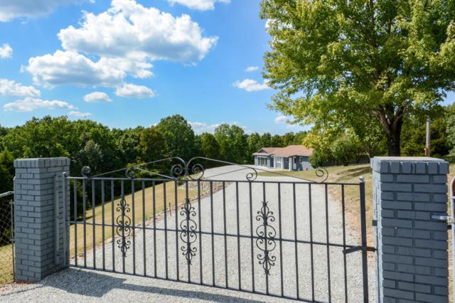 1224 Us Hwy 65, Walnut Shade, MO 65771 (MLS #60137419) :: Sue Carter Real Estate Group
