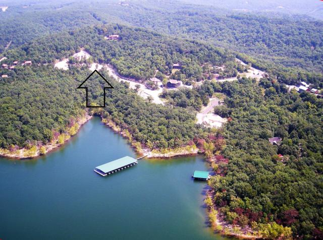 Lot #30 Big Timber Drive, Branson, MO 65616 (MLS #60137614) :: Sue Carter Real Estate Group