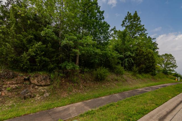191 Forest Oak Drive, Hollister, MO 65672 (MLS #60137727) :: Team Real Estate - Springfield