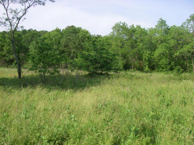 0 SE 374 Pvt. Rd., Osceola, MO 64776 (MLS #60138055) :: Sue Carter Real Estate Group