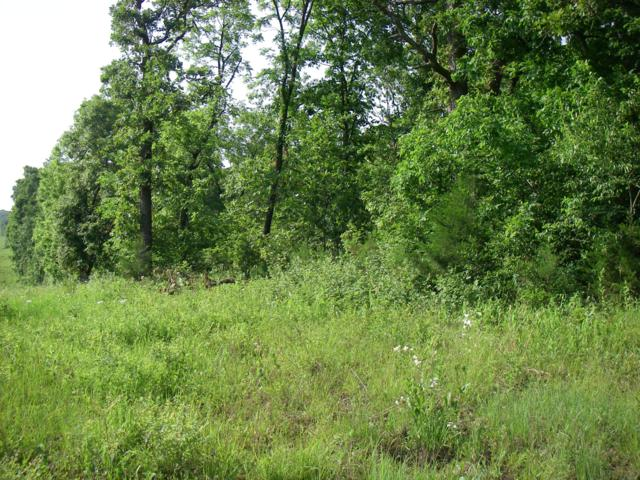 0 SE 374 Pvt. Rd., Osceola, MO 64776 (MLS #60138056) :: Sue Carter Real Estate Group
