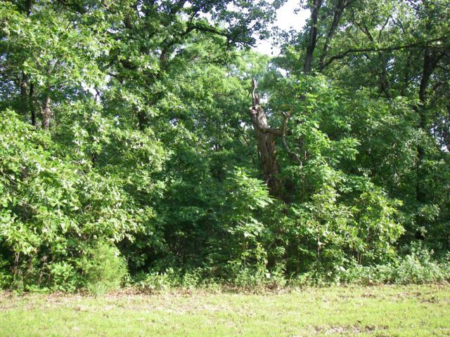 0 SE 374 Pvt. Rd., Osceola, MO 64776 (MLS #60138057) :: Sue Carter Real Estate Group
