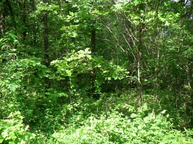 0 SE 1251 Rd., Osceola, MO 64776 (MLS #60138058) :: Sue Carter Real Estate Group