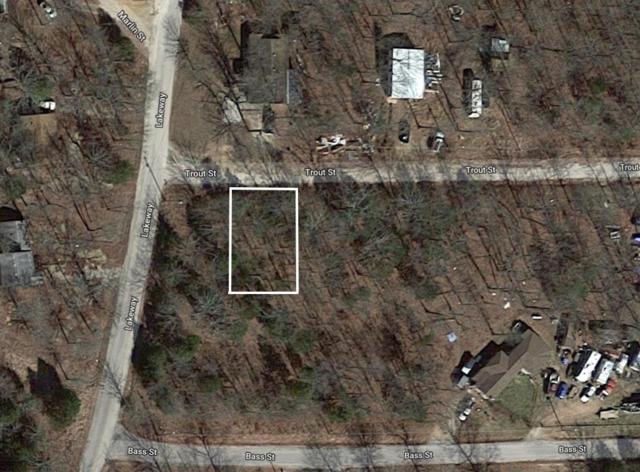 Lot 2 Tbd Trout Street, Kissee Mills, MO 65680 (MLS #60138083) :: Massengale Group