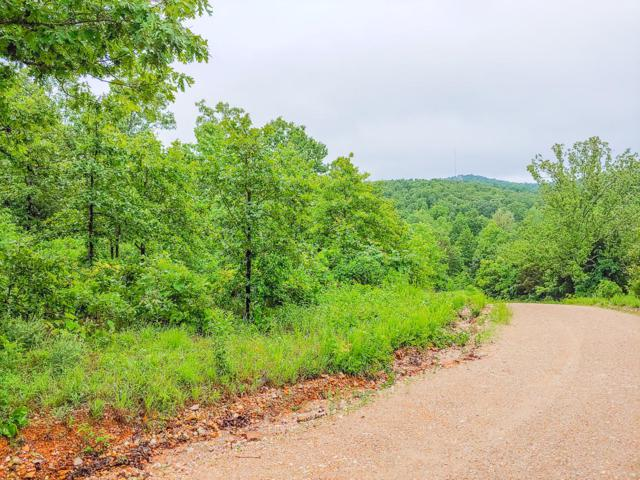 Tbd County Road 615B, Gainesville, MO 65655 (MLS #60138223) :: Sue Carter Real Estate Group